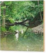 Magic Pond Wood Print