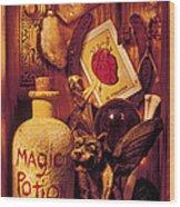 Magic Things Wood Print by Garry Gay
