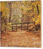 Magical Autumn Wood Print by Cheryl Davis