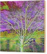 Magical Tree 4 Wood Print