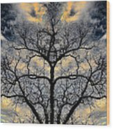 Magical Tree Wood Print