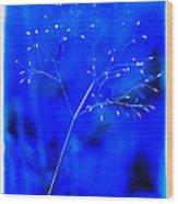 Magical Weed Wood Print