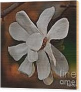 Magnolia Bloom Wood Print