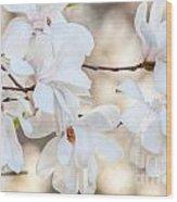 Magnolia Spring Wood Print