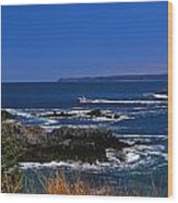 Maine At West Quoddy Wood Print