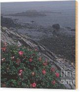 Maine Coastline Wood Print
