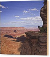 Majestic Views - Canyonlands Wood Print