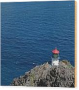 Makapu'u Lighthouse Wood Print