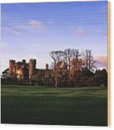 Malahide Castle, Co Fingal, Ireland Wood Print