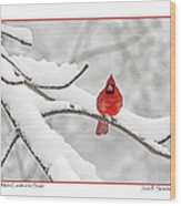 Male Cardinal In Snow Wood Print