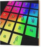 Male Chromosome Set Wood Print
