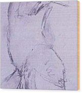 Male Nude 4281 Wood Print