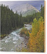 Maligne River Wood Print