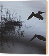 Mallard - Duck - Near The Tombigbee Wood Print
