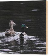 Mallards - Like Walking In The Rain Wood Print