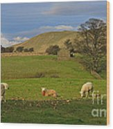 Mallerstang Dale In Cumbria Uk Wood Print
