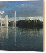 Malmoe Fountains Wood Print