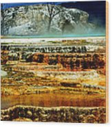 Mammoth Terrace - Yellowstone Wood Print by Ellen Heaverlo
