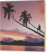 Man, Palm Trees, And Bather Silhouetted Wood Print