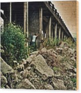 Man Under Bridge Wood Print