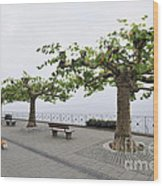 Man With Dog Walking On Empty Promenade With Trees Wood Print