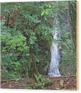 Manakiki Falls Wood Print