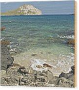 Manana Island View 0068 Wood Print