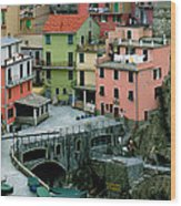 Manarola Houses On The Cinque Terre II Wood Print