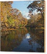 Manatee Springs Wood Print