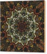 Mandala 111511 Wood Print