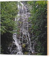 Mango Falls Wood Print by Randy Edwards