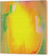 Mango In Mist Wood Print by Wendy Wiese