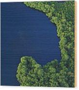 Mangrove Rhizophoraceae Stand, Bocas Wood Print