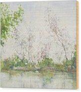Mangrove Swamp Wood Print