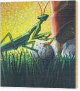 All Players Great And Small - Mantis Wood Print