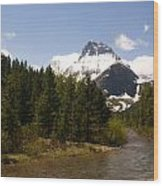 Many Glacier II Wood Print