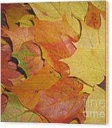 Maple Rainbow Wood Print