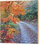 Maple Road Wood Print