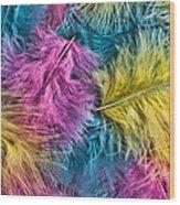 Marabou Colours Wood Print