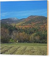 Marcy Field Autumn View Wood Print