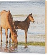 Mare And Foal Wood Print by Bob Decker