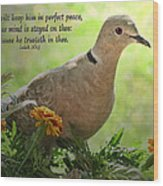 Marigold Dove With Verse Wood Print