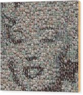 Marilyn Monroe Bubble Glass Mosaic Wood Print