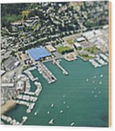 Marina And Coastal Community Wood Print