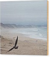 Marina Beach Fly By In The Mist Wood Print