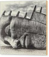 Maritime Memorial Cardiff Bay Opal Wood Print