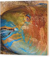 Market Fresh Fish Wood Print
