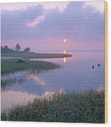 Marsh At Sunrise Over Eagle Bay St Wood Print by Tim Fitzharris