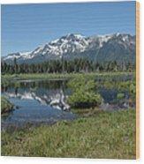marsh Flowing to Lake Tahoe Wood Print