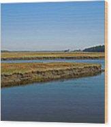 Marsh In Maine Wood Print
